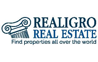 logo_realigro