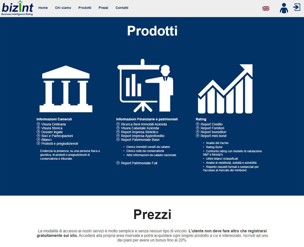 Bizint, piattaforma finanziaria