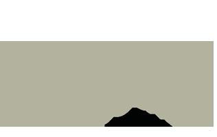 Bisubio logo