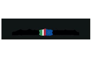 Nuova Irpinia logo